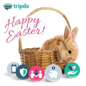 FB Organic Bunny 768×768